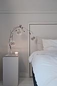Zweig mit Papierrosetten auf einem Sockel als Nachttisch