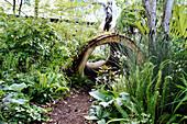 Hohler Baumstamm als Tunnel im Garten