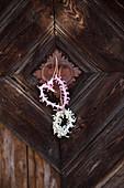 Wreaths of hyacinth florets decorating door