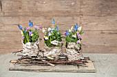 Spring flower arrangement decorated with birch bark