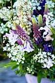 Early-summer bouquet of lupins, aquilegia, barley and cow parsley