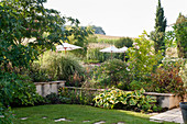 Rural French garden with lawn and parasols and corn field beyond