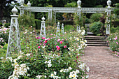 Metal obelisks and pergola in rose garden