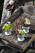 Small bouquets of wood anemones, milkweed, twigs, and feathers in egg cups