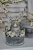 Silver stag's head and blackthorn blossom in metal tub