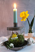 Fuzzy chick decoration and moss in glass base of candlestick