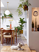 Dining area in split-level interior decorated with many houseplants