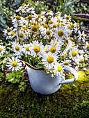 Bouquet of chamomile in enamel pot
