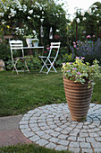Terracotta pot on paved, granite circle and seating area in front of white climbing rose