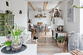 Cat in open-plan interior in modern country-house style