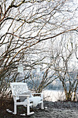 White-painted wooden bench below lanterns hung in tree in wintry garden