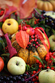 Autumn arrangement of pumpkin, apples, rowan berries and physalis seed pod