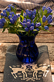 Closed Gentiana as a bouquet in a glass vase