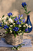 Closed Gentiana with snowberries as a bouquet in basket vase