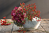 Hydrangea flower and rose hips