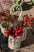 Rose hips as autumn bouquets