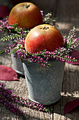 Apples in a wreath of budding heather
