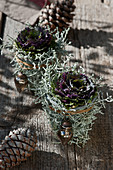 Ornamental cabbage wrapped in silver ragwort with Christmas decorations