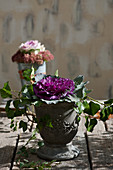 Purple ornamental cabbage in pot decorated with ivy tendrils