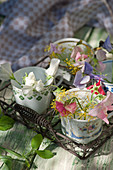 Sweet peas and dill flowers in small cups