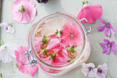 Homemade mallow toner with rose mallow, marshmallow and common mallow flowers