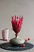 Modern arrangement with protea flower in vase