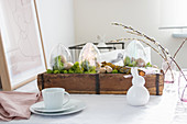 Easter arrangement of transparent plastic eggs and moss in small wooden crates