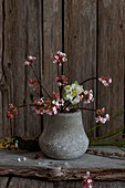 Winterschneeballzweige in einer kleinen Vase vor rustikaler Holzwand