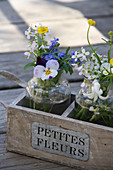 Small spring bouquets with horned violets, forget-me-nots, cuckoo flower, and buttercups