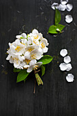 Posy of jasmine on black surface