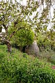Unusual summer house in sloping garden