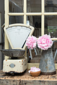 Peonies in a zinc jug with a pair of old kitchen scales