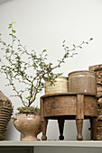 Old earthenware jars with sprigs of leaves