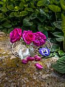Kleine Dekoidee mit Rosenblüten und Stiefmütterchen