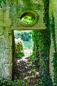 Doorway in overgrown stone wall