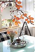 Spring bouquet of ranunculus below artistically arranged autumn twigs