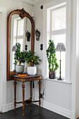 Zierlicher Tisch mit Orangenbäumchen und antiker Wandspiegel in Zimmerecke
