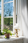 Potted plant and table lamp on windowsill