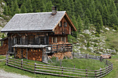 Alpine wooden house in the forest with wood storage