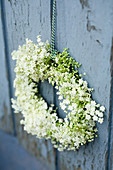 Decorative wreath of elderflowers