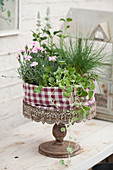 Pinks in planted arrangements wrapped in fabric