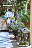 Arrangement of planters on shabby-chic terrace