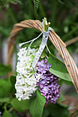 Purple and white lilac tied to basket handle