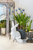 Grape hyacinths with Easter bunnies as Easter decoration