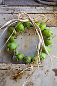 Wreath of unripe apples