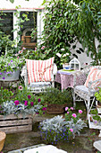 Wicker furniture, potted plants and herbs on summer terrace