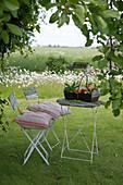Sitzplatz im Garten, Korb mit Holunderblüten und Klatschmohn auf dem Tisch