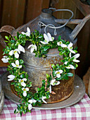 Heart-shaped wreath of box and snowdrops