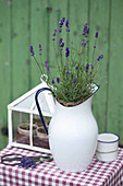 Enamel pitcher planted with lavender