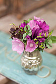 Posy of mallows, osteospermums and clover leaves in silver vase